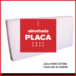 PLACA (1)